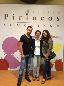 pirineos2